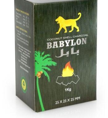 Babylon Kokosnoot kolen - 1kg  Babylon Kokosnoot kolen – 1kg babylon kokosnoot kolen 1kg 350x380